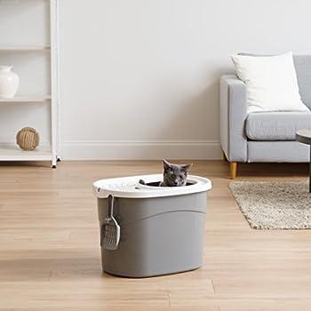 Iris Ohyama, Maison de toilette pour chat avec couvercle à trous, entrée par le haut et pelle - Top Entry Cat Litter Box - TECL-20, plastique, gris, 50,8 x 35,5 x 35,5 cm