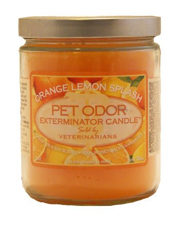 Pet Odor Exterminator Candle: Orange Lemon