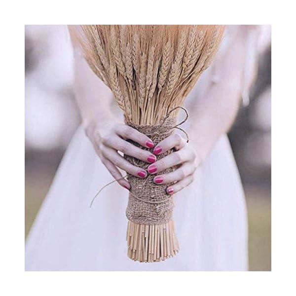 Alivier 100x Ramo de Trigo seco Decoración de la Boda Flor Artificial Flores de Trigo para Decoraciones caseras