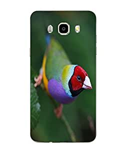 Make My Print Bird Printed Colorful Soft Back Cover For SAMSUNG Galaxy J5 - 6 (New 2016 Edition)