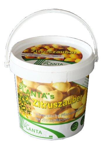 planta-953811-plantas-zitruszauber-1-kg-mineralisches-spezialnahrsalz-fur-zitruspflanzen