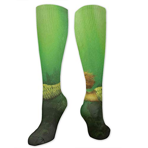 Unisex Highly Elastic Comfortable Knee High Length Tube Socks,Mermaid With Fish Tail Swimming In The Deep Sea Fantasy World Artwork,Compression Socks Boost Stamina,Green Dark Green Ginger -