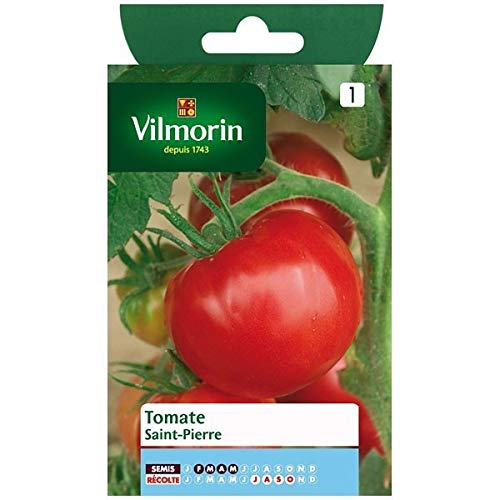 Vilmorin - Beutel Samen Tomate Saint Pierre