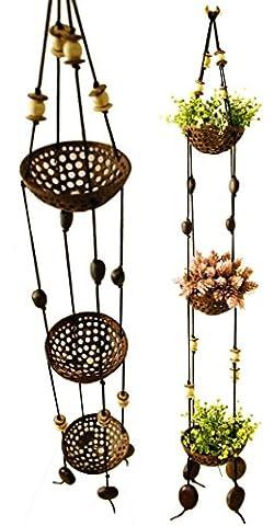 exotique Élégance 3étages perforé Coquille de noix de coco à suspendre Pot de fleurs Pot de fleurs.