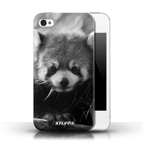Stuff4 Hülle / Hülle für Apple iPhone 4/4S / Wolf Muster / Zoo-Tiere Kollektion Waschbär