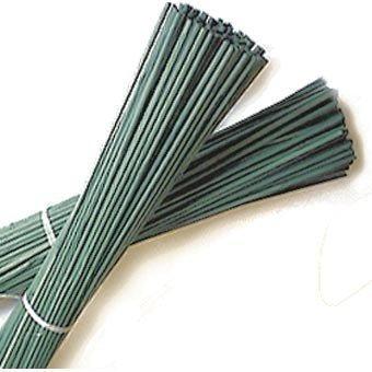 """Elixir Gardens ® 2Ft Green Flower Sticks Cane Support 24"""" - 50"""