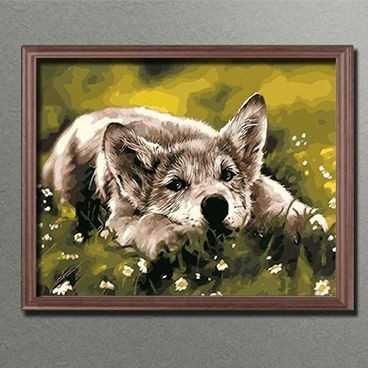 Malen nach Zahlen: Hunde Blick - Leinwand fertig gespannt auf KeilrahmenGröße 40 x 50 cm (MNZ-BBL-169 )