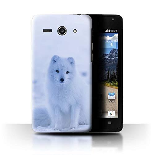 eSwish Hülle/Case für Huawei Ascend Y530 / Weißer Polarfuchs Welpe Muster/Süß Baby Tier Fotos Kollektion