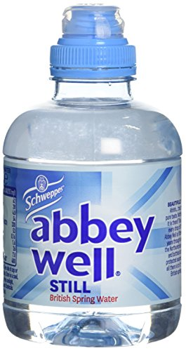 schweppes-abbey-well-still-natural-mineral-water-pet-bottle-250-ml