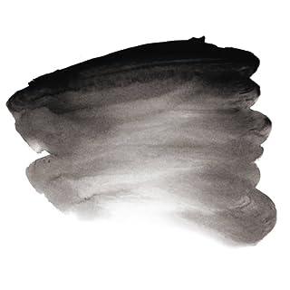 Atelier Interactive Acrylic Paint - 80ml - Carbon Black Series 1 (600)