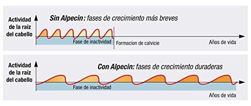41uFSHF 42L - Alpecin Cafeína Líquida, 1 x 200 ml - Líquido anticaída - energía pura para las raíces