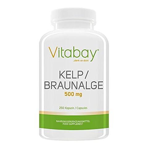Kelp 500 mg - Braunalge - 250 Kapseln – Natürliche Quelle Für Jod (Mangan 250 Tabletten)