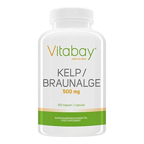 Kelp 500 mg - Braunalge - 250 Kapseln - natürliche Quelle für Jod -