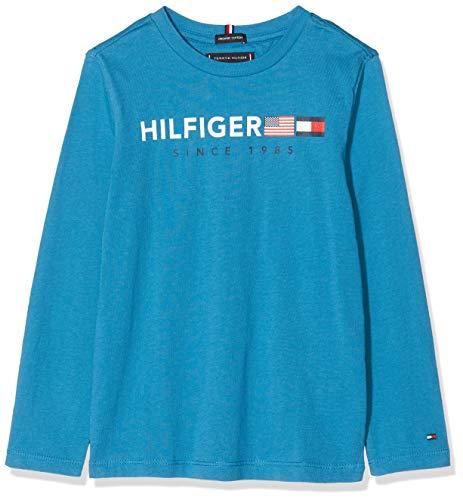 Tommy Hilfiger Jungen Flags Graphic Tee L/S T-Shirt, Blau (Saxony Blue 491), 140 (Herstellergröße:10)