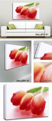 GFM Painting Handgemalte Ölgemälde Reproduktion von A Trio of Red Tulips Modern Art,Ölgemälde von Abstrakte Kunst Zeitgenössische Kunst - 36 By 48 inches -
