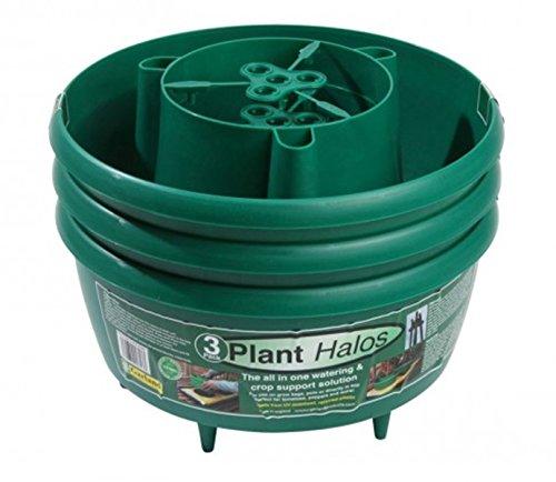 tierra-garden-gp167g-green-plant-halos-pack-of-3