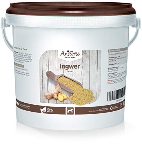 AniForte Ingwer Pulver 1kg - Naturprodukt für Pferde, schonend fein gemahlen Ingwerpulver, Premium Qualität aus Nigeria, Unterstützt Gelenke, Stoffwechsel, Knochen, Anregung Appetit, Gelenk-Pulver