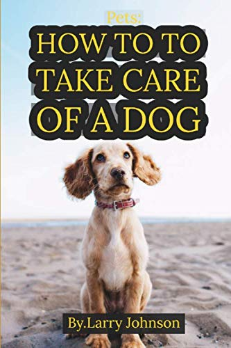 Pets: HOW TO TO TAKE CARE OF A DOG: A NEW OWNER'S GUIDE, EVERYTHING YOU NEED TO BE PREPARED FOR YOUR DOG -