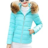 SEWORLD Damen Daunenjacke, 2018 Mode Cotton Down Jacket Short Coat Women Solid Slim Thick Large Fur Collar Hooded Winter Warm Parkas Overcoat Zipper Padded Tops Outwear(X2-blau,EU-36/L)