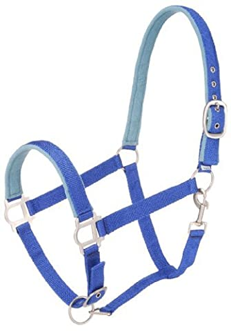 Tough 1 Nylon Padded Halter with Satin Hardware, Royal Blue, Pony by Tough 1