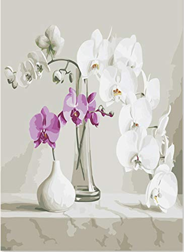 Gvneo dipingere con i numeri pittura artistica per numero di vasi in vetro phalaenopsis in ceramica bianca petali dipinti con numeri con olio(40x50cm senza telaio)