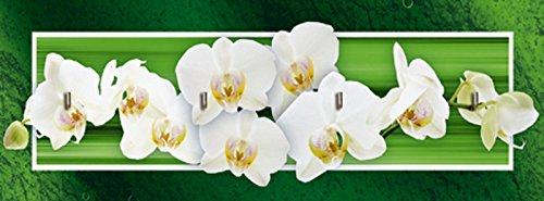 artland-schlussel-brett-mit-motiv-bedruckt-auf-holz-mit-4-haken-w-l-orchideen-grun-botanik-blumen-or