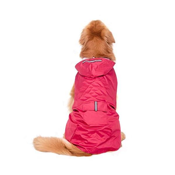 JOYKK Impermeable para Perros con Capucha Poncho Impermeable para Lluvia Impermeable Ropa de Lluvia Ropa Reflectante… 1