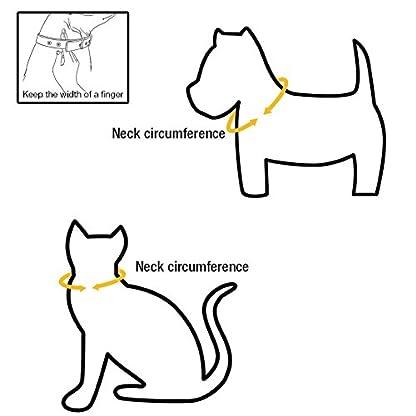 Heavy Duty Triple Choke Collar Chain Chrome Plated Metal Iron Dog Chain Collar for Training Walking Obedience Behavior… 7