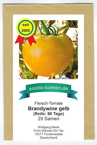 gelbe Riesen-Fleischtomate - reicher, köstlicher Geschmack - Brandywine gelb - 20 Samen
