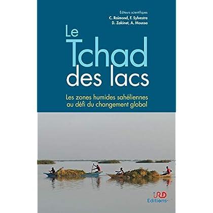 Le Tchad des lacs: Les zones humides sahéliennes au défi du changement global (Synthèses)