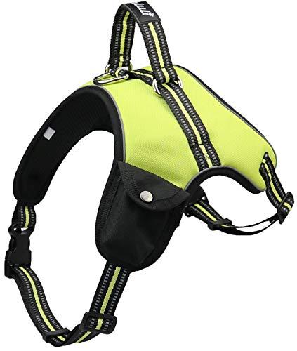 Hundegeschirr für kleine/mittelgroße/ große Hunde und Welpen | reflektierendes 3M Sicherheitsgeschirr | gefüttert, weich und atmungsaktiv | S-XXL | schwarz, grün, orange (M, Grün)