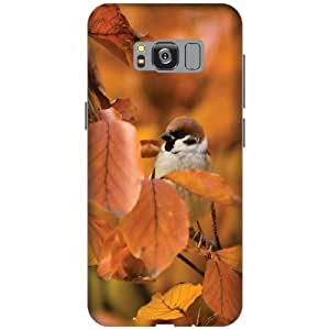 Printland Printed Hard Plastic Back Cover for Samsung Galaxy S8 Edge -Multicolor