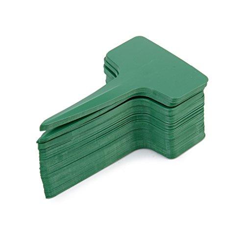 100-stk-10-x-6-cm-kunststoff-t-typ-pflanzenschilder-strauch-baum-pflanzensamen-tags-marken-baumschul