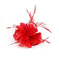 SMILEQ Fashion Feather Fascinators Womens Flower Derby Hat Hair Clip for Cocktail Ball Wedding Headband Barrettes (Red)