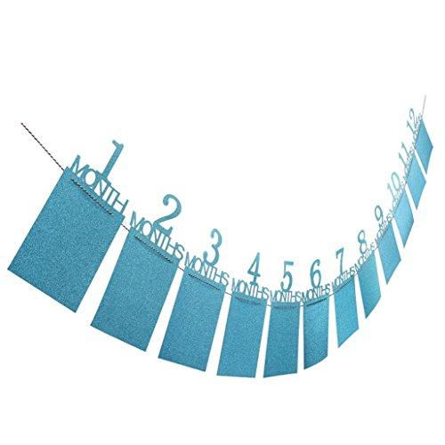 Wandsticker KüChe,bobo4818 1. Kindergeburtstag Geschenk Dekorationen 1-12 Monat Foto Banner Monatliche Fotowand (blue)