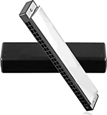 HIMANSHU MUSICALS Hero HARMONICA Mouth Organ 24 Holes 48 Tones C Key With White Box (Silver)