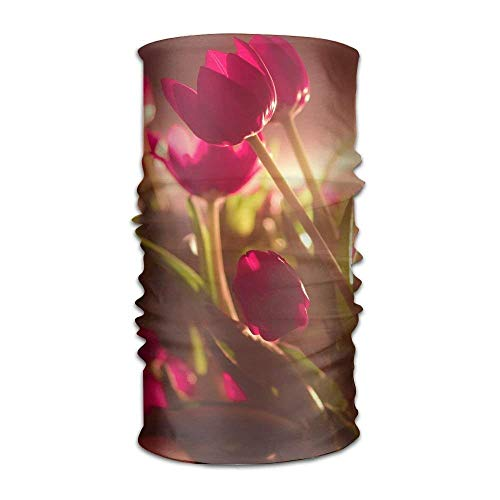 SJuczi Magic Headwear Red Tulips Outdoor Scarf Headbands Bandana Mask Neck Gaiter Head Wrap Mask Sweatband 9.8W x19.7L in Tulip Magic