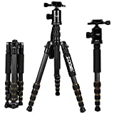 ZOMEI Z699C Carbon Fiber Portable Tripod with Ball Head Compact Travel for Canon,Sony