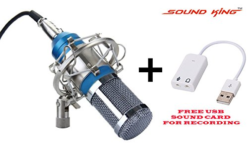 Sound King SK-800 Silica Gel Professional Condenser Microphone Mic Sound Studio Recording Dynamic Full Metal (Requires Phantom Power)