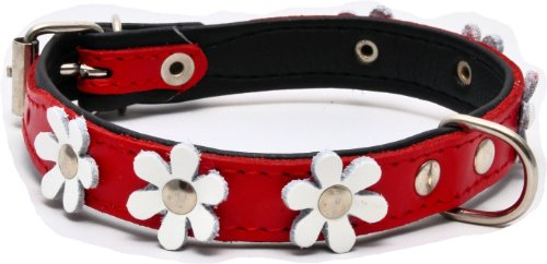 """ZOOLESZCZ LEATHER DOG COLLAR FLOWER Designer DAISY COLOUR PADDED Handmade RED with BLACK lining and WHITE FLOWER (10"""" 1.2cm wide/ 25cm long) 1"""