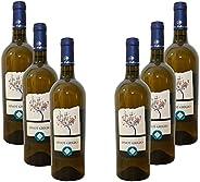 Pinot grigio IGP - 12% alc. vol. - vino bianco - 6 bottiglie da 750 ml. - Cantine Mediterranee