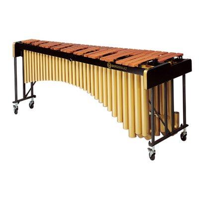 Bergerault Campus Basse Classic Marimba