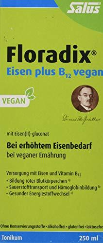 Floradix Eisen plus B 12 vegan - Nahrungsergänzungsmittel -