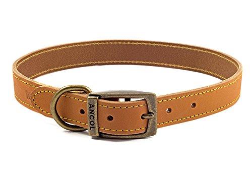 Ancol Timberwolf Leder-Halsband Senf Halsband, 50–60cm, senf (Senf Fertig)