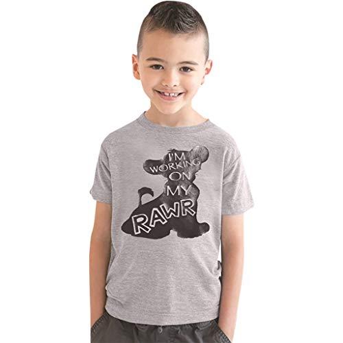 Tyoby Baby T-Shirt Junge Cartoon Tarnung Dinosaurier Tier Kurzarm Shirt Kurzärmliges Oberteil Sommer Tops(Grau,XXL)