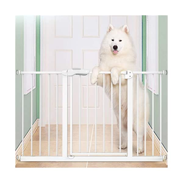 GFYWZ Pet Safety Gate for Baby Dog Cat or Other Pets for extra-wide openings, with no threshold and one-hand operation,75~86cm GFYWZ ◆ Measure your opening before purchasing: This gate fits openings 65 to 74cm/75 to 84cm. It will not fit any opening smaller than 65cm. If your opening is larger than 84cm you will require an additional purchase of an extension. ◆ One handed operation - the one handed operation is fantastic for times when you're holding your child and the double locking feature ensures extra security to help keep your child safer. ◆ To be installed on the wall or door, Functional, lightweight and portable,Convenient walk-through design 5