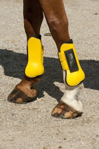 Guêtres et protège-boulets NORTON 'Pro' jaune / noir poney