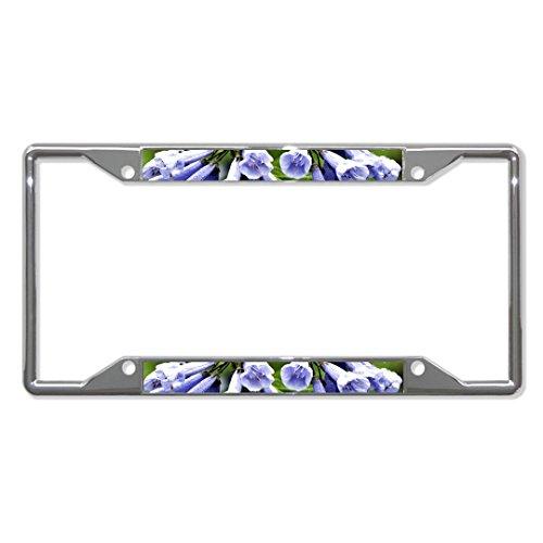 Virginia Blaue Glöckchen Blumen Metall Kennzeichenrahmen Kennzeichenhalter Vier Löcher Perfekt für Männer Frauen Auto Garadge Dekoration