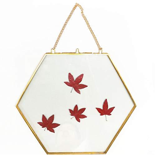 FREEWYJD Gold Metall Grenze Kreative Hexagon Metallrahmen Foto Rahmen Kette Hängende Wand Glasrahmen Paar Bilderrahmen -