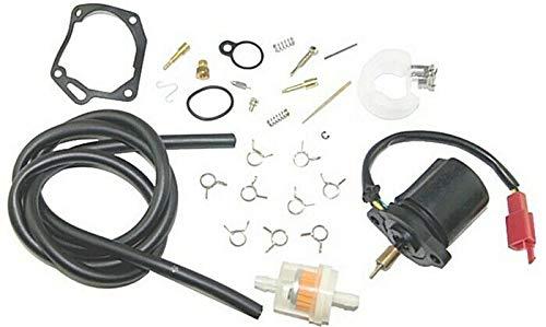 Unbranded Reparatur KIT VERGASER Benzin Filter für AEON REVO 50 Zylinderkit